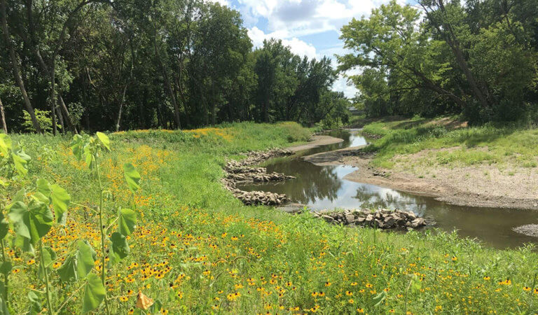 A restored stream with protected sanitary sewer infrastructure and improved ecological functions and stream habitat diversity.